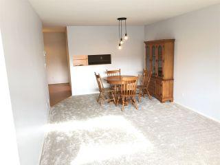 Photo 8: 205 9942 151 STREET in Surrey: Guildford Condo for sale (North Surrey)  : MLS®# R2337611