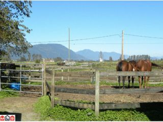 "Photo 9: 38916 OLD YALE Road in Abbotsford: Sumas Prairie House for sale in ""ARNOLD"" : MLS®# F1029038"