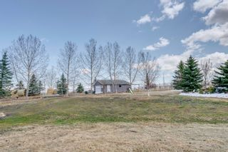 Photo 45: 242078 98 Street E: Rural Foothills County Detached for sale : MLS®# A1093852