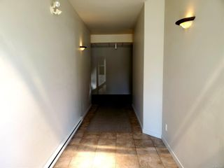 Photo 7: 5304 Argyle St in : PA Port Alberni Mixed Use for sale (Port Alberni)  : MLS®# 871215