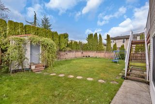 Photo 31: 23915 114A AVENUE in Maple Ridge: Cottonwood MR House for sale : MLS®# R2558339