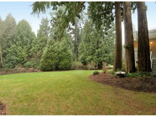 """Photo 3: 3169 136TH Street in Surrey: Elgin Chantrell House for sale in """"Bayview"""" (South Surrey White Rock)  : MLS®# F1401327"""