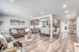 Main Photo: 839 Raynard Crescent SE in Calgary: Albert Park/Radisson Heights Detached for sale : MLS®# A1125110
