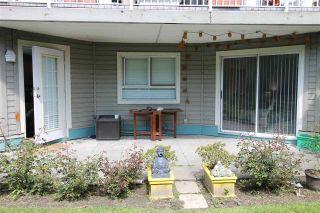 """Photo 1: 113 15140 108 Avenue in Surrey: Guildford Condo for sale in """"River Pointe"""" (North Surrey)  : MLS®# R2574834"""