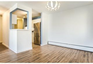 Photo 5: 403 130 25 Avenue SW in Calgary: Mission Apartment for sale : MLS®# A1104864