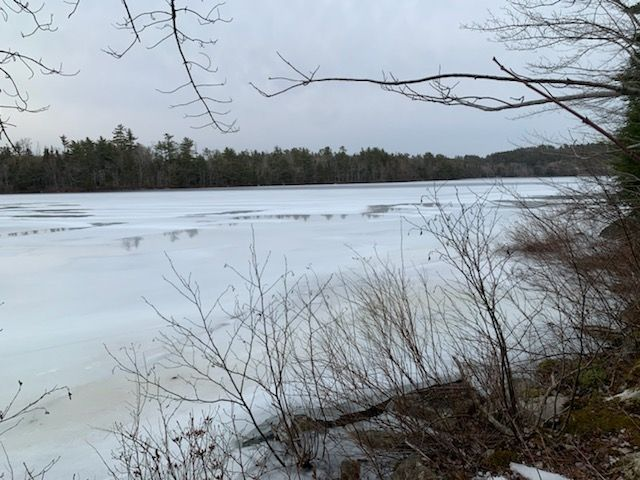 Main Photo: 30 Joyce Court in Lake Echo: 31-Lawrencetown, Lake Echo, Porters Lake Vacant Land for sale (Halifax-Dartmouth)  : MLS®# 202104724