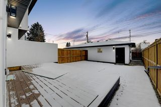 Photo 42: 835 21 Avenue NW in Calgary: Mount Pleasant Semi Detached for sale : MLS®# A1056279