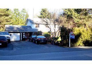 "Photo 1: 24061 104TH Avenue in Maple Ridge: Albion House  in ""ALBION"" : MLS®# V1044345"