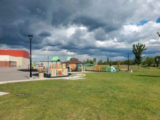 Photo 44: 20820 55 Avenue in Edmonton: Zone 58 House for sale : MLS®# E4251212