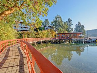 Photo 26: 1136 Lucille Dr in Central Saanich: CS Brentwood Bay House for sale : MLS®# 838973