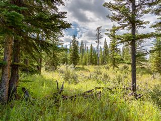 Photo 10: 7 34364 RANGE ROAD 42: Rural Mountain View County Land for sale : MLS®# A1017817