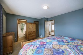 Photo 24: 234 ELGIN View SE in Calgary: McKenzie Towne Detached for sale : MLS®# A1035029