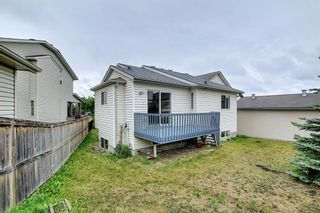 Photo 41: 379 Coventry Road NE in Calgary: Coventry Hills Detached for sale : MLS®# A1139977
