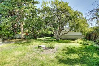 Photo 32: 1504 20 Street NW in Calgary: Hounsfield Heights/Briar Hill Detached for sale : MLS®# A1065862