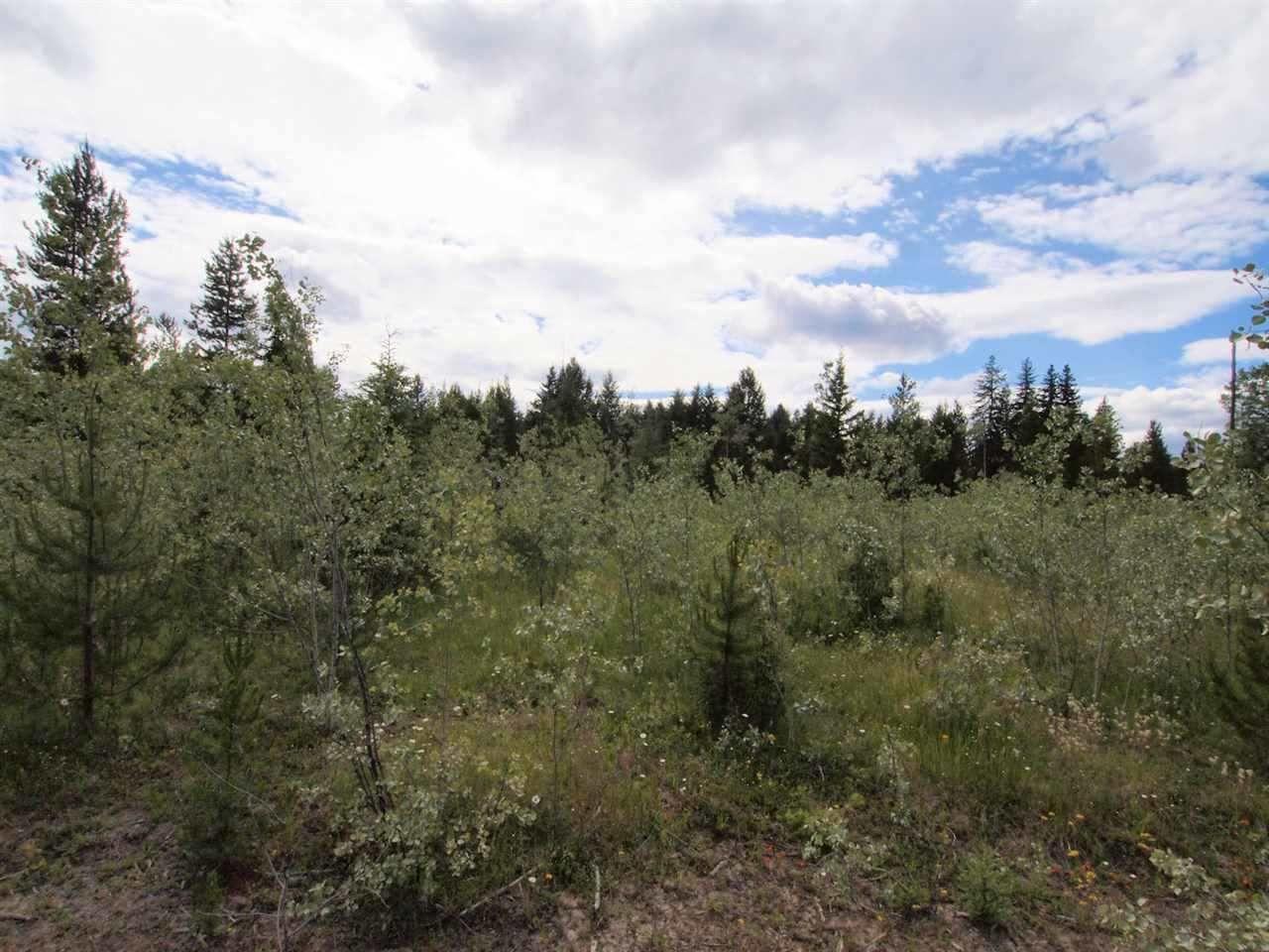 Photo 10: Photos: 4573 BAKKEN Road: Forest Grove Land for sale (100 Mile House (Zone 10))  : MLS®# R2377308