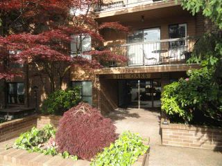 """Photo 1: 203 3264 OAK Street in Vancouver: Cambie Condo for sale in """"THE OAKS"""" (Vancouver West)  : MLS®# R2072297"""