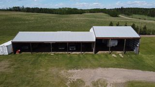 Photo 17: 51060 RGE RD 33: Rural Leduc County House for sale : MLS®# E4247017