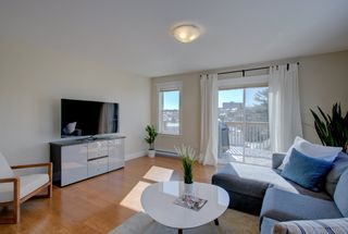 Photo 11: 11 Halef Court in Halifax: 7-Spryfield Residential for sale (Halifax-Dartmouth)  : MLS®# 202009193