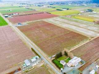 Photo 38: 40320 NO. 5 Road in Abbotsford: Sumas Prairie Agri-Business for sale : MLS®# C8036514