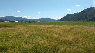 Photo 3: 10474 PATTERSON Road in Mission: Durieu Land for sale : MLS®# R2605591