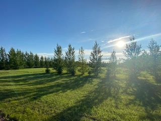 Photo 3:  in Wainwright: Peterson Estates Land Only for sale (MD of Wainwright)  : MLS®# A1068240