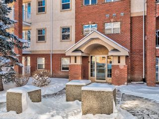 Photo 3: 205 417 3 Avenue NE in Calgary: Crescent Heights Apartment for sale : MLS®# A1114204