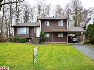 Photo 1: 8606 E TULSY Crescent in Surrey: Queen Mary Park Surrey House for sale : MLS®# F1204537
