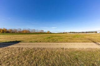 Photo 50: 173 Northbend Drive: Wetaskiwin House for sale : MLS®# E4266188
