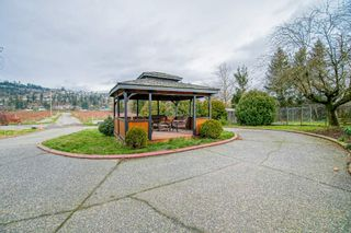 Photo 27: 35826 SOUTH PARALLEL Road in Abbotsford: Sumas Prairie Agri-Business for sale : MLS®# C8035413
