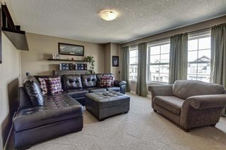 Photo 21: 17 Cranberry Lane SE in Calgary: Cranston Detached for sale : MLS®# A1142868