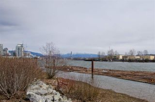 """Photo 19: 311 250 SALTER Street in New Westminster: Queensborough Condo for sale in """"PADDLERS LANDING"""" : MLS®# R2445205"""