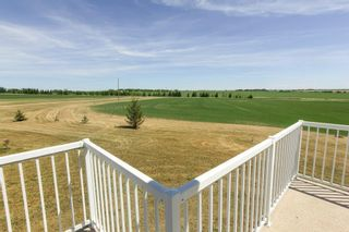 Photo 25: 55130 Rge. Rd. 265: Rural Sturgeon County House for sale : MLS®# E4248279