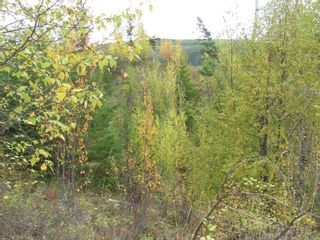 Photo 30: 80 Acres Creighton Valley Road, in Lumby: Vacant Land for sale : MLS®# 10239894