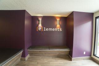 Photo 5: 104 340 WINDERMERE Road in Edmonton: Zone 56 Condo for sale : MLS®# E4247159