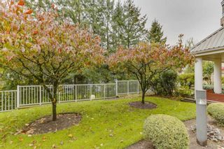 "Photo 25: 417 11605 227 Street in Maple Ridge: East Central Condo for sale in ""Hillcrest"" : MLS®# R2508742"