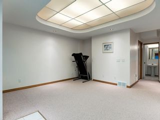 Photo 36: 132 HAMPSHIRE Grove NW in Calgary: Hamptons Detached for sale : MLS®# A1104381