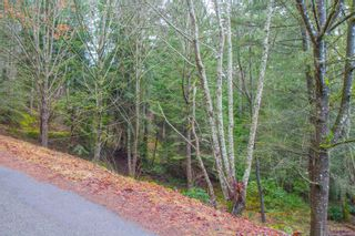 Photo 4: 2604 Yardarm Rd in : GI Pender Island Land for sale (Gulf Islands)  : MLS®# 863927