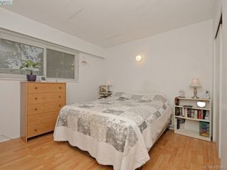 Photo 11: 4034 Hodgson Pl in VICTORIA: SE Lake Hill House for sale (Saanich East)  : MLS®# 806727