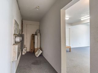 Photo 20: 4405 Bute St in Port Alberni: PA Port Alberni Triplex for sale : MLS®# 886649