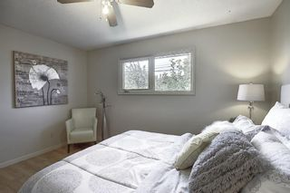 Photo 16: 48 DOVERTHORN Place SE in Calgary: Dover Detached for sale : MLS®# A1023255