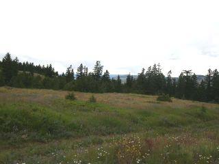 Photo 13: 1328 AC SCOTT ROAD in : Valleyview Lots/Acreage for sale (Kamloops)  : MLS®# 135387