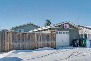 Photo 22: 10 Abalone Crescent NE in Calgary: Abbeydale Detached for sale : MLS®# A1072255
