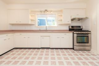 Photo 17: 1314 Balmoral Rd in : Vi Fernwood House for sale (Victoria)  : MLS®# 857803