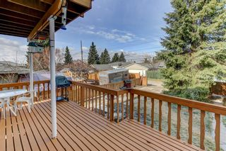 Photo 7: 64 Canyon Drive NW in Calgary: Collingwood Detached for sale : MLS®# A1091957