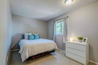 Photo 17: 339 Hawkhill Place NW in Calgary: Hawkwood Detached for sale : MLS®# A1125756