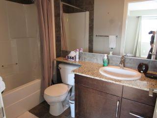 Photo 12: 303, 9603 98 Avenue in Edmonton: Condo for rent