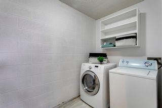 Photo 29: 211 7007 4A Street SW in Calgary: Kingsland Apartment for sale : MLS®# A1086391