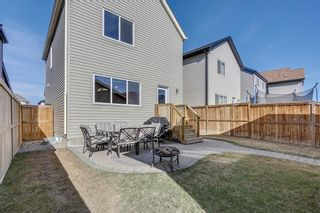 Photo 31: 188 COPPERPOND Road SE in Calgary: Copperfield House for sale : MLS®# C4182363