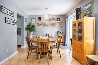 Photo 11: 309 Thibault Street in Winnipeg: St Boniface Residential for sale (2A)  : MLS®# 202008254
