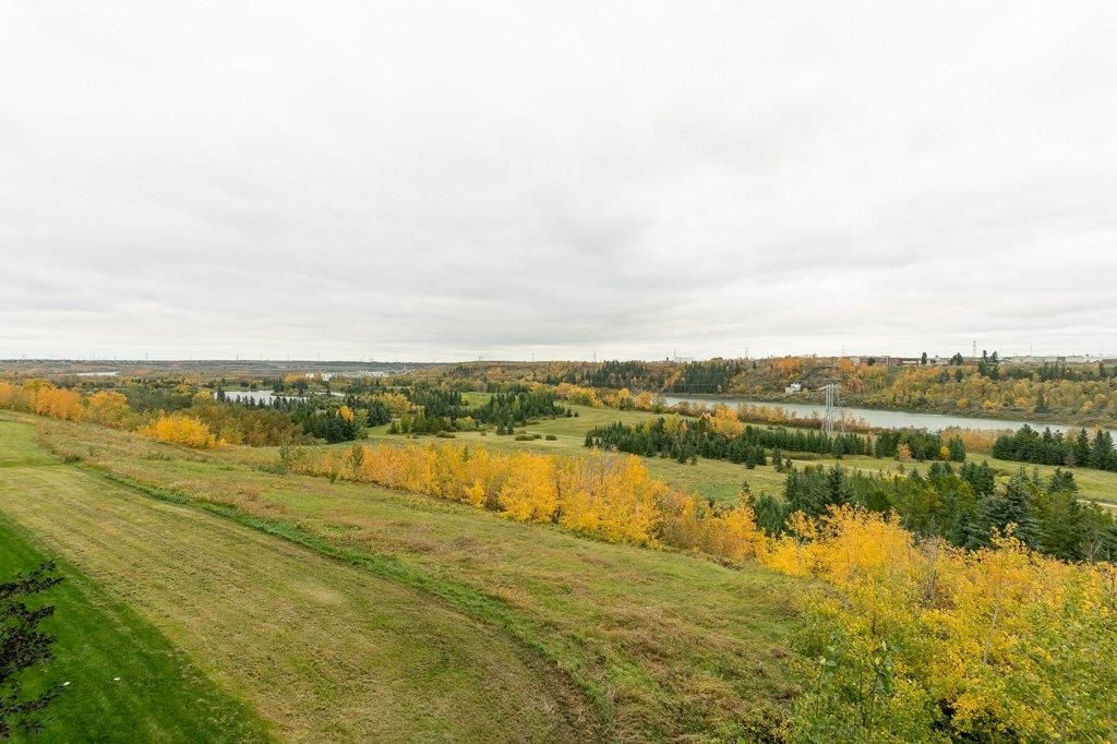 Photo 20: Photos: 403 1188 HYNDMAN Road in Edmonton: Zone 35 Condo for sale : MLS®# E4259060